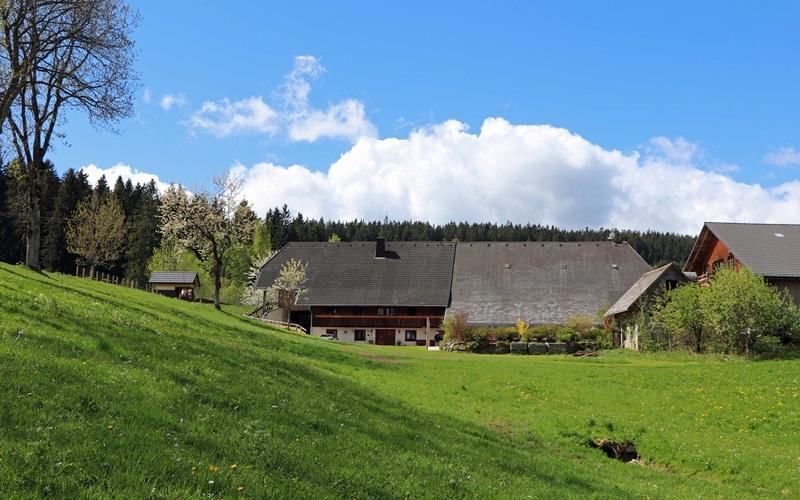 hofansicht-lippenhof-schwarzwald-klein