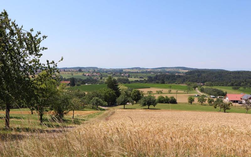 schwarzwaldbauernhof